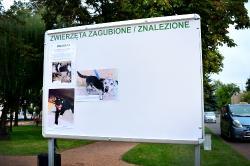 ZAGUBIONE/ZNALEZIONE