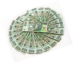 Kluby wnioskują o 872 946,50 zł. Na dotacje jest o 500 tys. zł mniej